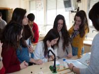Prácticas de Laboratorio en los laboratorios del Instituto.